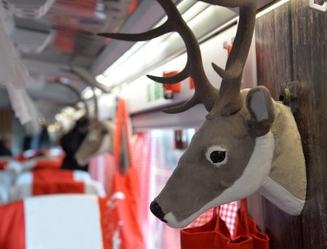 Aktionszug Chur – Bock auf Graubünden?
